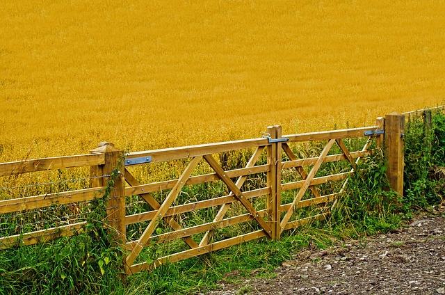 agriculture-71656_640.jpg
